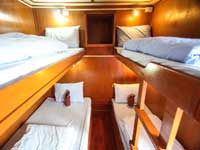 Manta Queen 1 four bed shared cabin