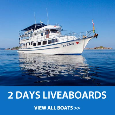 2 Days diving liveaboard trips to the Similan islands, Koh Bon, Koh Tachai or Richelieu rock