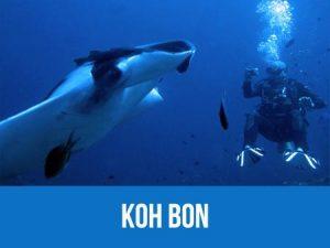 Manta point Koh Bon dive map and information