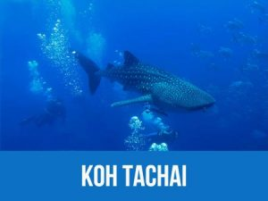 Dive map and information about Koh Tachai