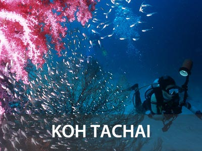 Koh Tachai dive site information and dive map