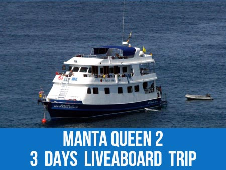 See the soft coral gardens at Richelieu rock on the Manta Queen 2