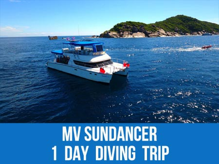 Khao Lak diving daytrip on the MV Sundancer and dive with the triggerfish