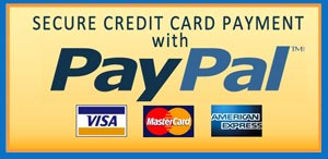 Pay easy and safe online with Paypal