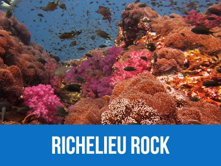 Richelieu rock dive site information and dive map