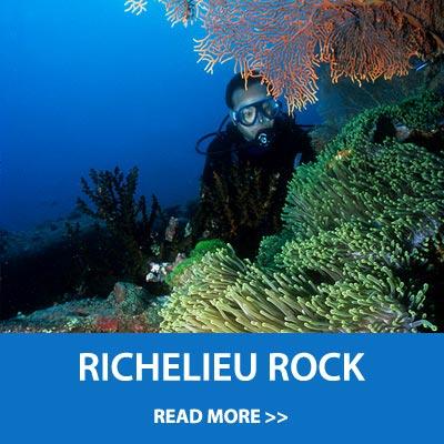 Scuba diving daytrip to Richelieu rock on the Blue Marlin
