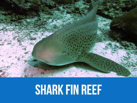 Information and dive map of Similan islands scuba diving spot Shark fin reef