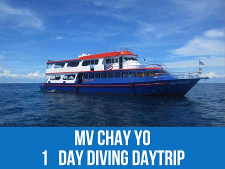 MV Chay Yo daytrip to sea turtle hotspot Similan islands national park