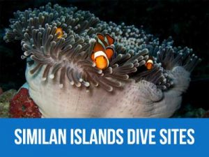 The dive sites at the Similan islands