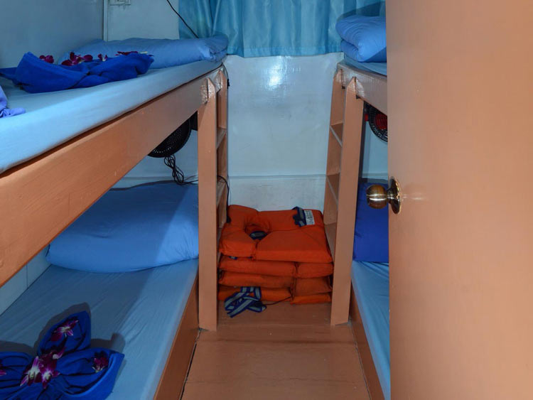 Similan islands liveaboard Manta Queen 7 four bed shared cabin