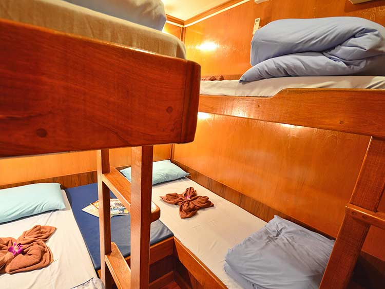 Manta Queen 3 four bed shared cabin